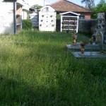 cimiter3