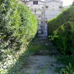 cimiter7