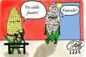 risate4