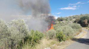 incendio (1)