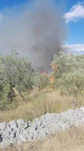 incendio (5)
