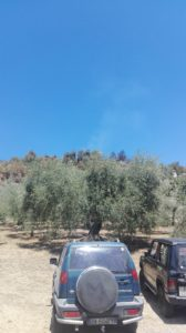 incendio vallefredda (2)